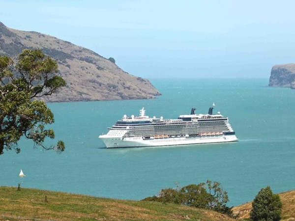 Akaroa Cruise Shore Excursion Full Day Tour