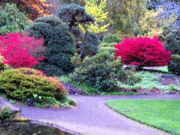 Seattle Garden and Park Tour