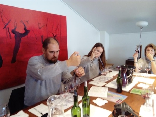 Medoc Wine Tour - Winemaker for a day!