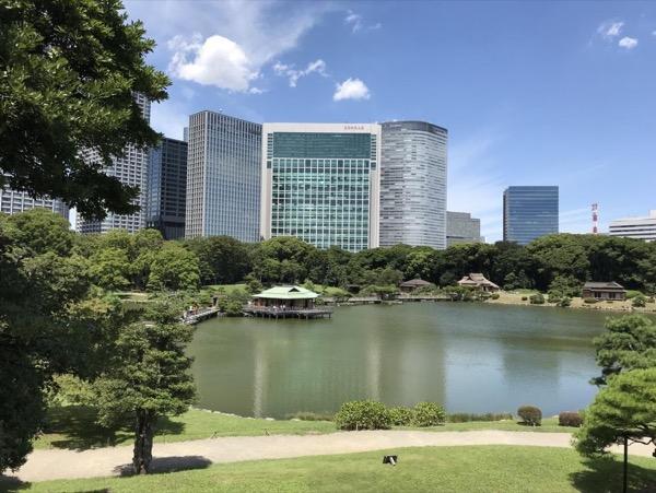 Tokyo half-day private tour