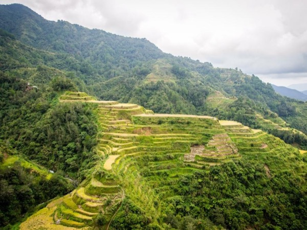 Private Guided Tour Banaue and Batad