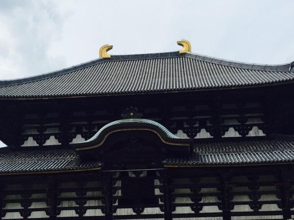Half day tour to Nara from Osaka/ Kyoto - Private Tour