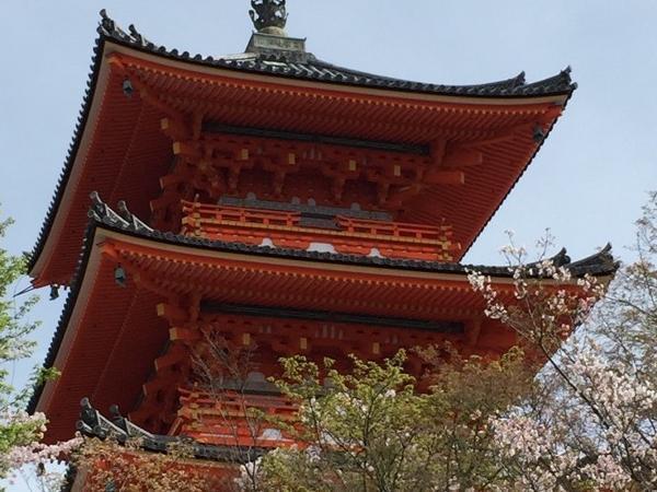 Enjoy halfday in Kyoto - Private Tour