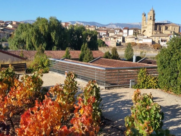 Private Tour to taste Rioja best wines, old culture & villages