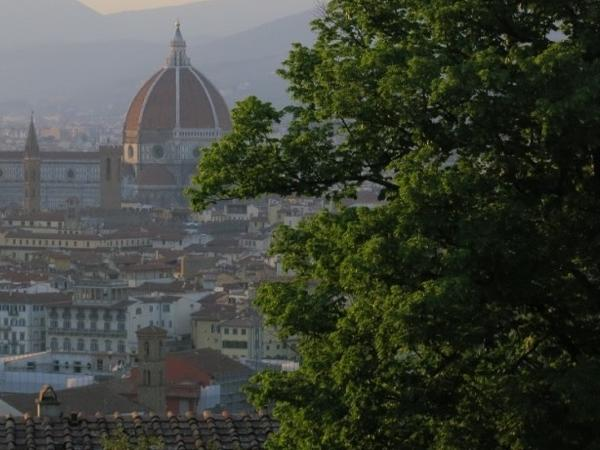 The Best of Florence: Uffizi, Accademia, Walking Tour