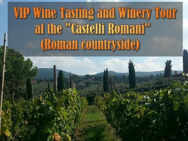 VIP Wine Tasting and Winery 7 hours Tour at the