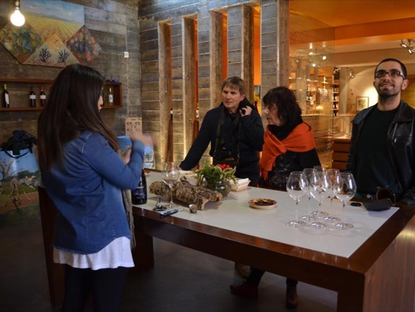 Visit the best boutique winery of Requena, Valencia with me!