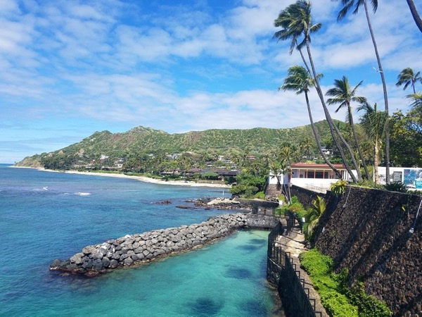 Shangri La and Honolulu City Tour with O'ahu's Top Rated Private Tour Guide