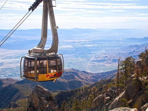 Palm Springs Aerial Tram Tour
