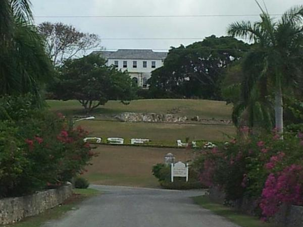 Rosehall Great House and Dunns River Falls
