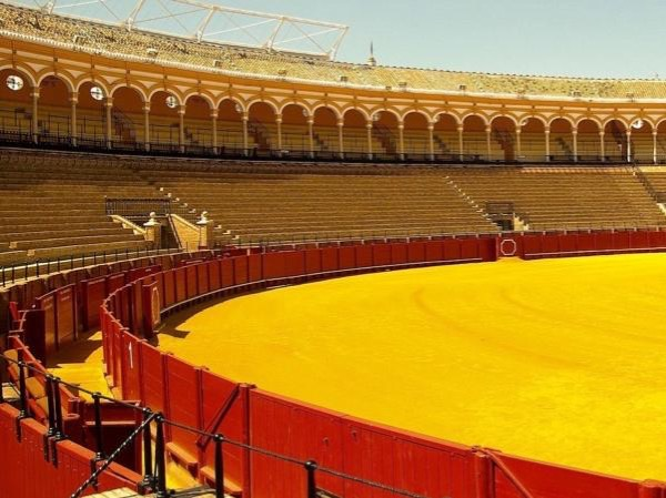 A Seville Full Immersion Private Tour