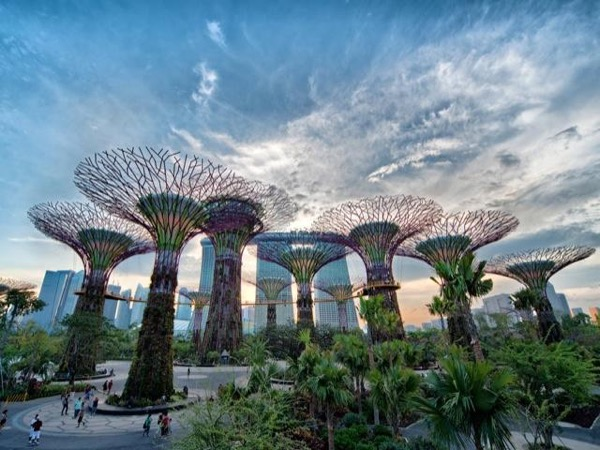 *Most Popular* The Singapore City Tour (Transportation Included)