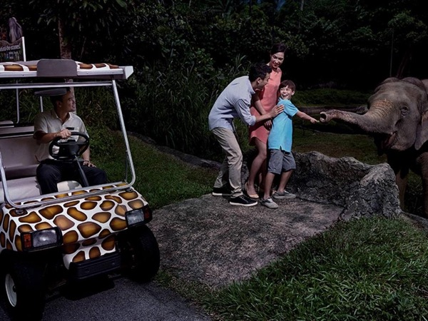 After Dark: VIP Night Safari Tour - The Jungle Experience (Transportation Included)