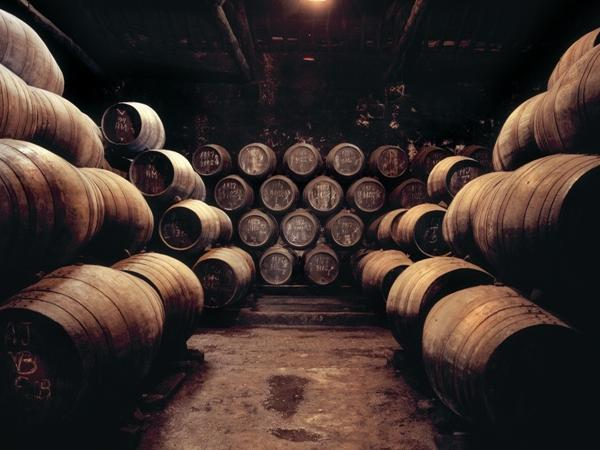 Douro Valley Premium Wine Tasting - Private Tour