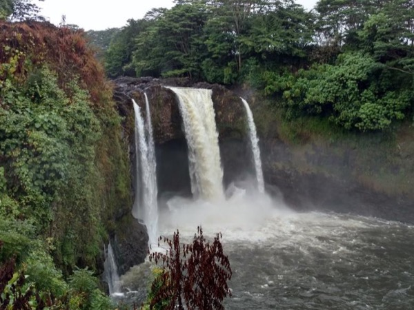 From Hilo side: Waterfalls, Hamakua Coast and Waipio Valley Overlook Private Tour