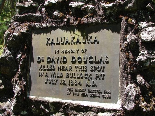 Botanist David Douglas Memorial on Mauna Kea