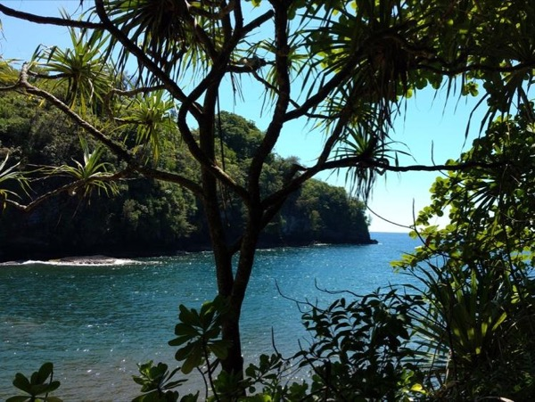 From Hilo Side - 4 Hour Custom Private Tour
