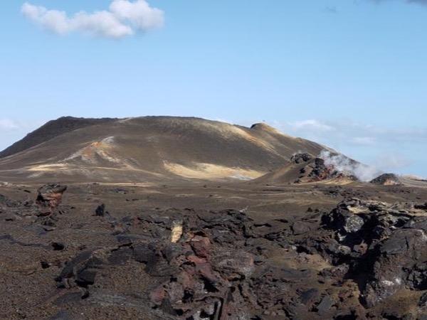 Kilauea Eruption Private Tour Leilani Estates and More