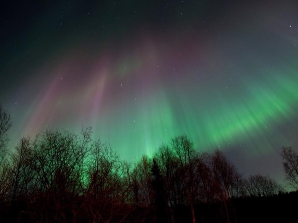Anchorage Private Northern Lights Tour