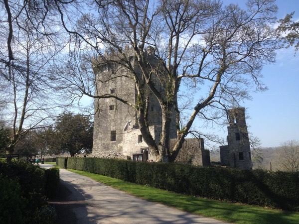 Private Blarney Castle & Woollen Mills and Kinsale Ireland Tour from Killarney