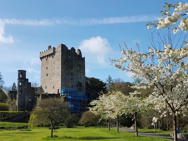 Blarney Castle Rock of Cashel Private Tour