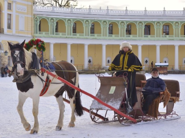 Catherine Palace (with a visit to the Amber Room) and Pavlovsk - Private tour
