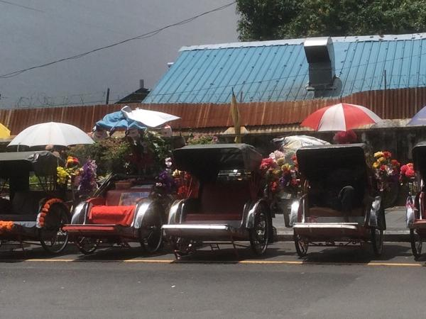 Travelling in Penang and Trishaw
