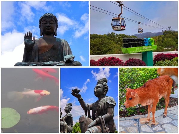 Lantau Island Big Buddha private car tour