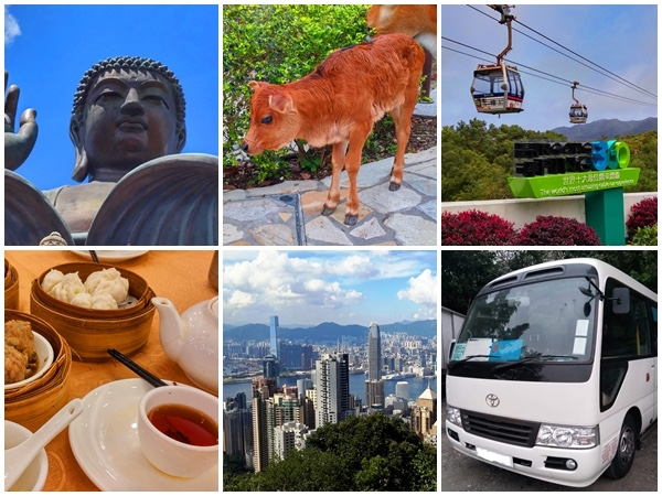 Hong Kong Lantau Island full day private bus tour