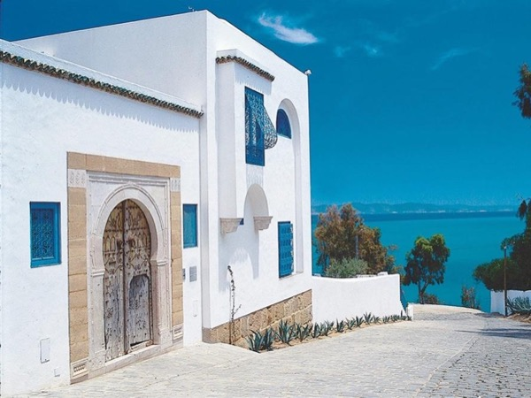 Day tour .Tunis ,Carthage ,Sidi Bou Said ,Bardo Museum Private Tour