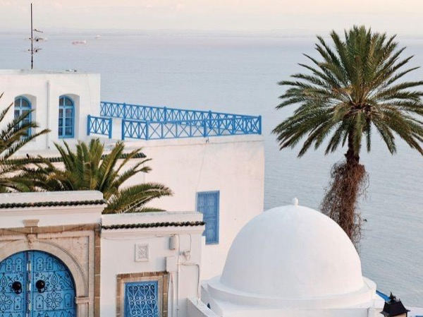 Shore excursion : Carthage ,Sidi Bou Said, Bardo museum ,Tunis Medina Private Tour