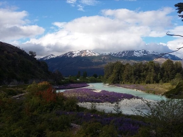 Private Tour of Puerto Chacabuco Aysen + Simpson National Park + Coyhaique (for up to 6 people)