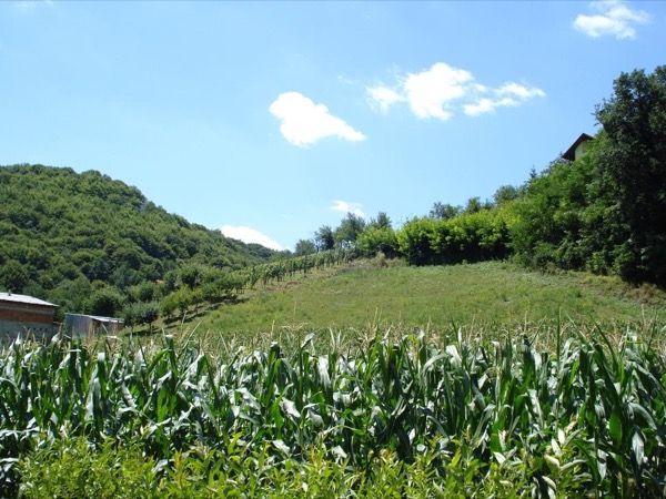 Hills of Zagorje Guided Tour
