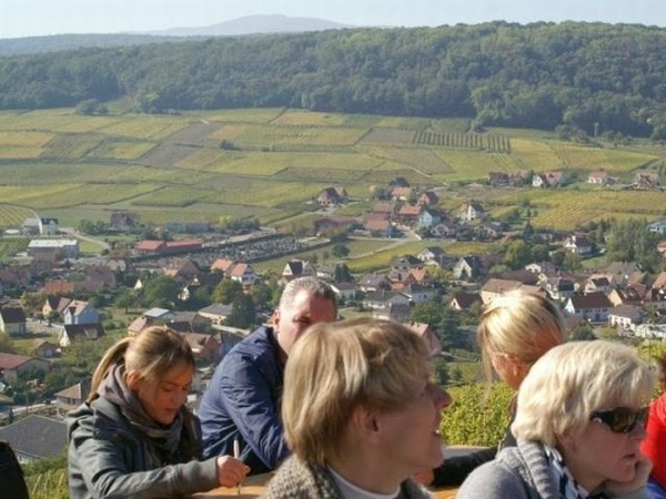 The Route des Cretes: a one day private journey in history over the top of the Vosges mountains, border of Alsace