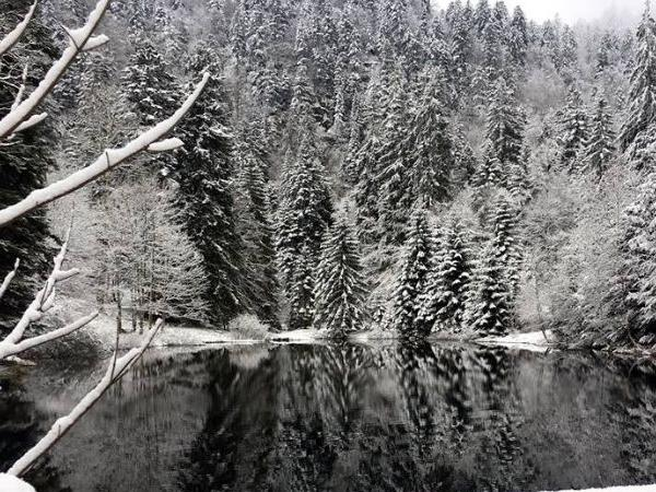 Discover Gerardmer, pearl of the Vosges Mountains - Winter Season