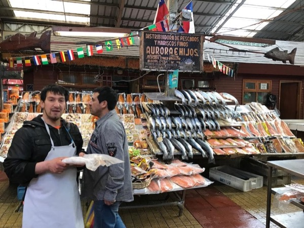 Shore Excursion.Tenglo Island Leisure walk and Traditional Angelmo fish market.
