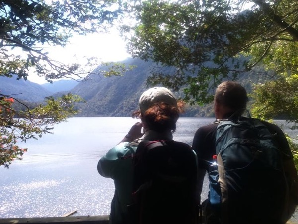 Hiking excursion at Alerce Andino National Park - Angelmo Market visit