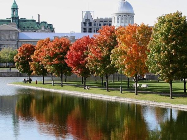 Montreal Shore Excursions Private Customized Discovery Tour for Cruise ship passenger
