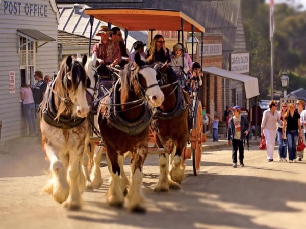 Sovereign Hill Private Tour