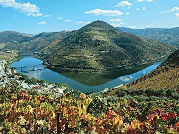 Porto to Douro Valley Private Tour (Amarante, Régua any other destination...)