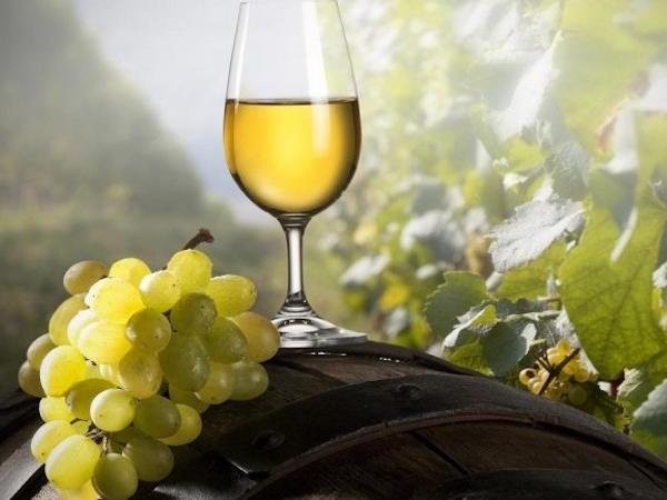 Vinho Verde - Green Wine - Private Tour