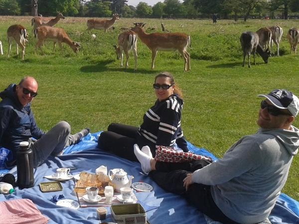Hampton Court Palace + Royal Park Bike Tour + tea picnic
