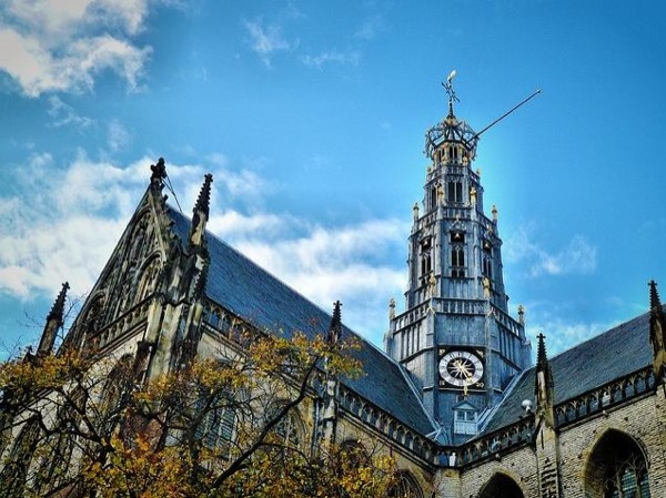Visit Haarlem with your own private art historian, private guide