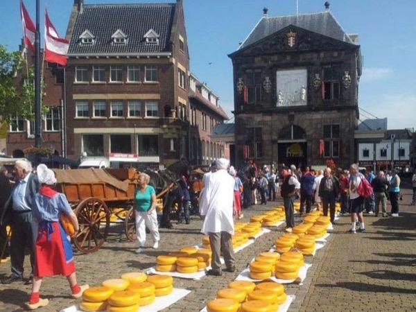 Visit Gouda with your own private art historian, private guide