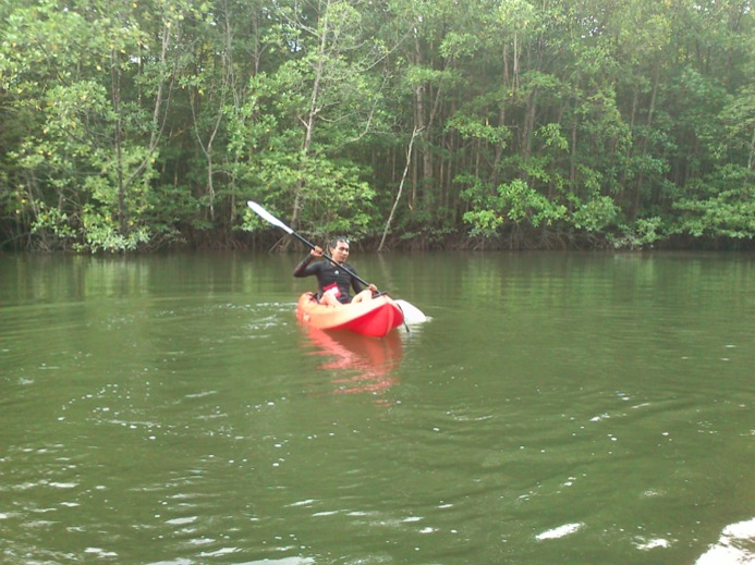 Kayaking at Kilim Geoforest Park
