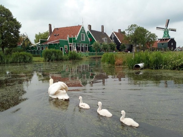 Giethoorn, the Venice of the North + the famous windmills of the Zaanse Schans
