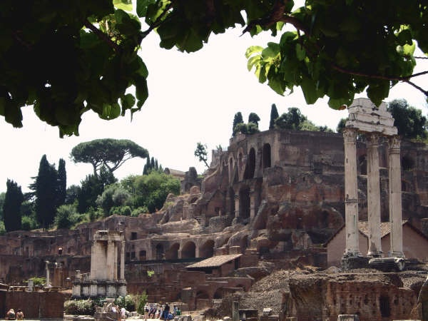 Ancient Rome Private Walking Tour: Colosseum, Roman Forum, Capitoline Hill with Skip the Line Entrances