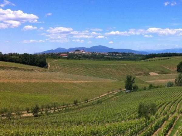 Wine & Food day tour in the Rural Tuscany - From Florence
