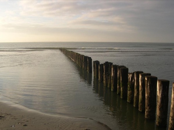 Day trip to Ameland or Schiermonnikoog