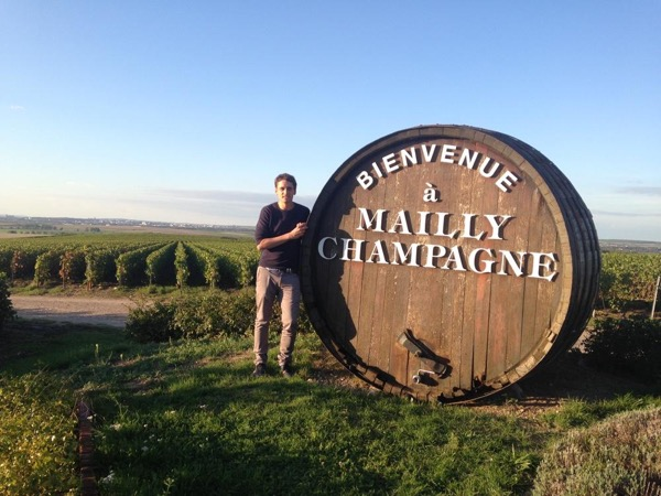 Private Bubble Tour : The vineyards of Champagne